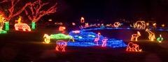 19 zoo lights i-jRbCZN8-XL