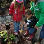 The City of Beaverton Presents: Get involved in Community Sustainability!