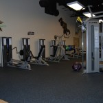 New Business Spotlight: BIO Force Youth Fitness
