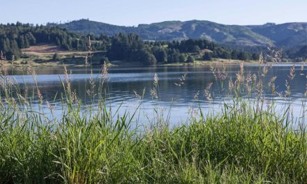 Must-Do Activities in the Tualatin Valley when restrictions are lifted
