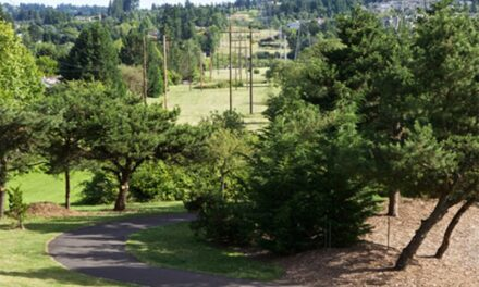 Miles of trails, all year round makes Beaverton an outdoor-friendly place to live
