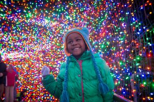 Zoo News is Good News: 5 Pro Tips for a Luminous ZooLights Experience