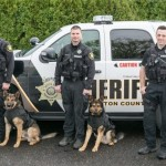 Sheriff K-9 Units Receive Body Armor: Thanks to a generous donation by a county resident