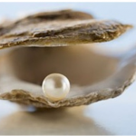 "Pearls are the Birthstone of June: Also known as the ""Queen of Gems"""