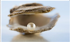 07 pearl in clam