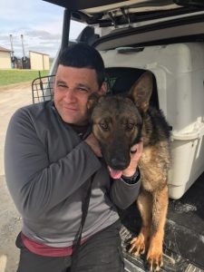 Beaverton Police Department: Meet Rizzo, Our New K9 Teammate