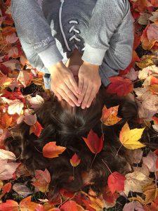 18 autumn leaves