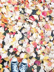 Musings of a Beaverton Teen: The Beautiful Wonders of Autumn Leaves
