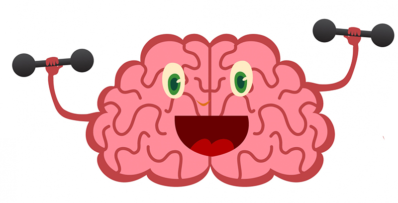 08 Brain 01