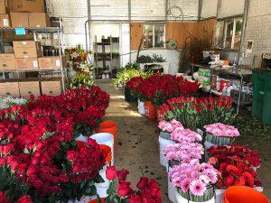 07 Beaverton Florists flowers