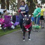 Pets are People Too: Dogs on parade!