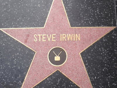 Musings of a Beaverton Teen: Steve Irwin and his family's impact on my life