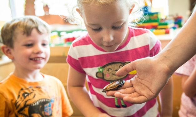 Oregon Zoo's 'Critter Club' camps begin in February