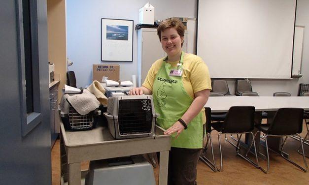 Bonnie Hays Animal Shelter, Spay & Save