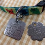 Dog license vs rabies tags… What's the difference?