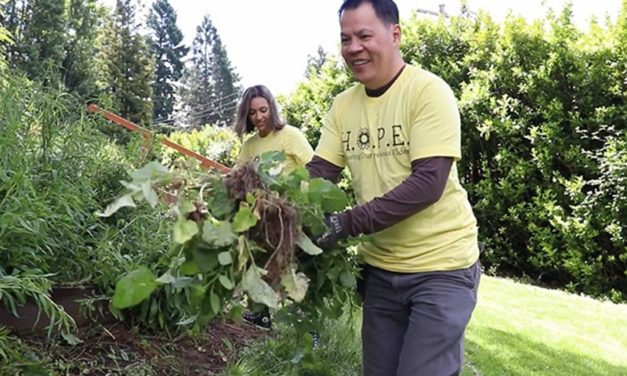 Yard maintenance & outdoor services for seniors: Introducing HOPE