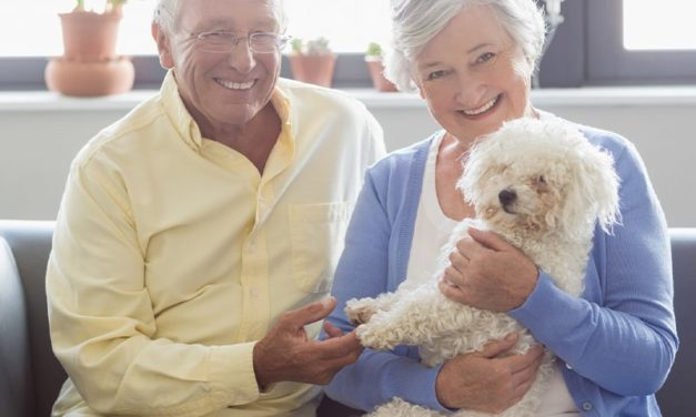 Donations and senior discounts. Honor a pet with a donation to Bonnie Hays