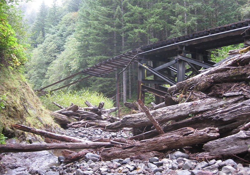 Revitalizing the Salmonberry Trail. This 86-Mile Trail winds through valley and forest