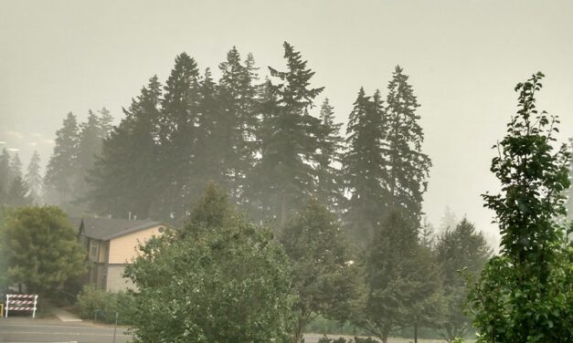 Wildfire smoke: what you can do to stay healthy. An unfortunate trend we may continue to see each year