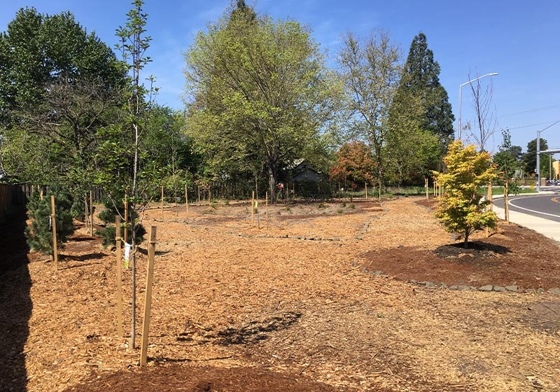 What is an Arboretum? We have 3 in Beaverton!
