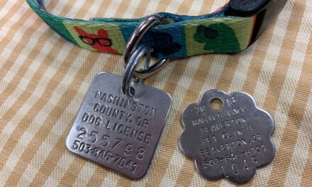 Q&A with the Animal Shelter: Does my dog have to wear his license tag?