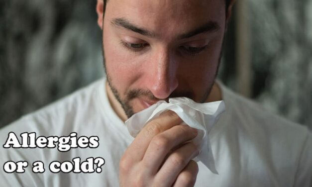 Surviving Allergies in the Pacific Northwest: Learn what triggers your symptoms