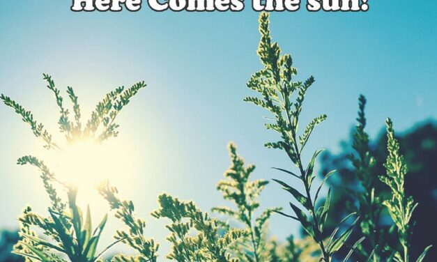 We are all overdue for some outdoor fun… here comes the SUN!