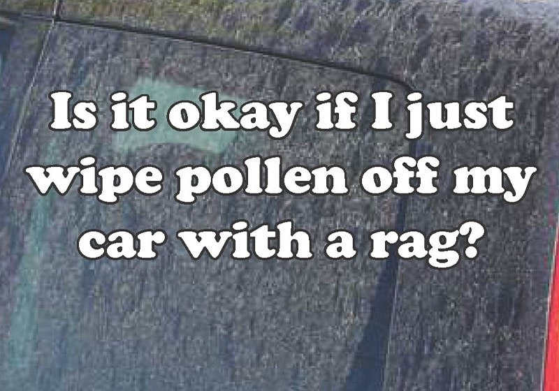 Every spring and summer, my car gets a big dusting of pollen, can it really damage my car's exterior?