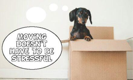 Moving at a Mature Age: It doesn't have to be stressful